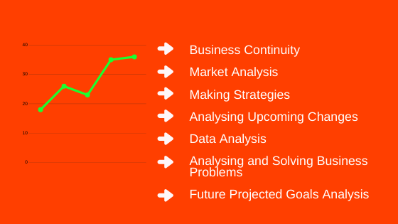 Business Analyst, Importance of Business Analyst