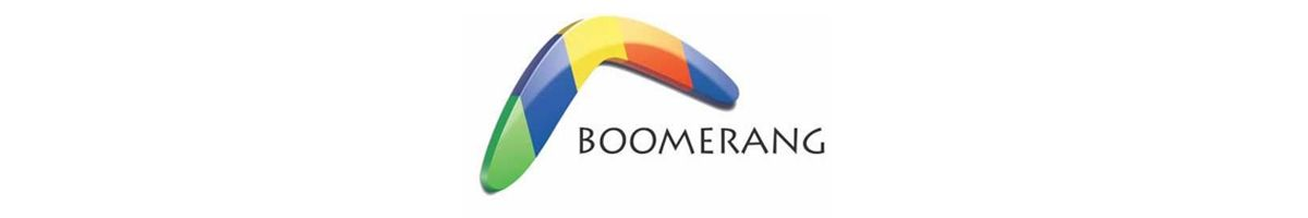 Boomerang - Software for Business Development