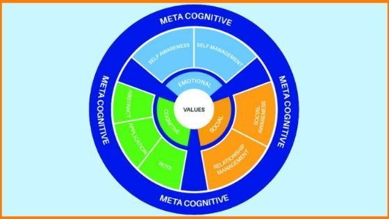 Framework for Human Potential- Chrysalis Home Learning