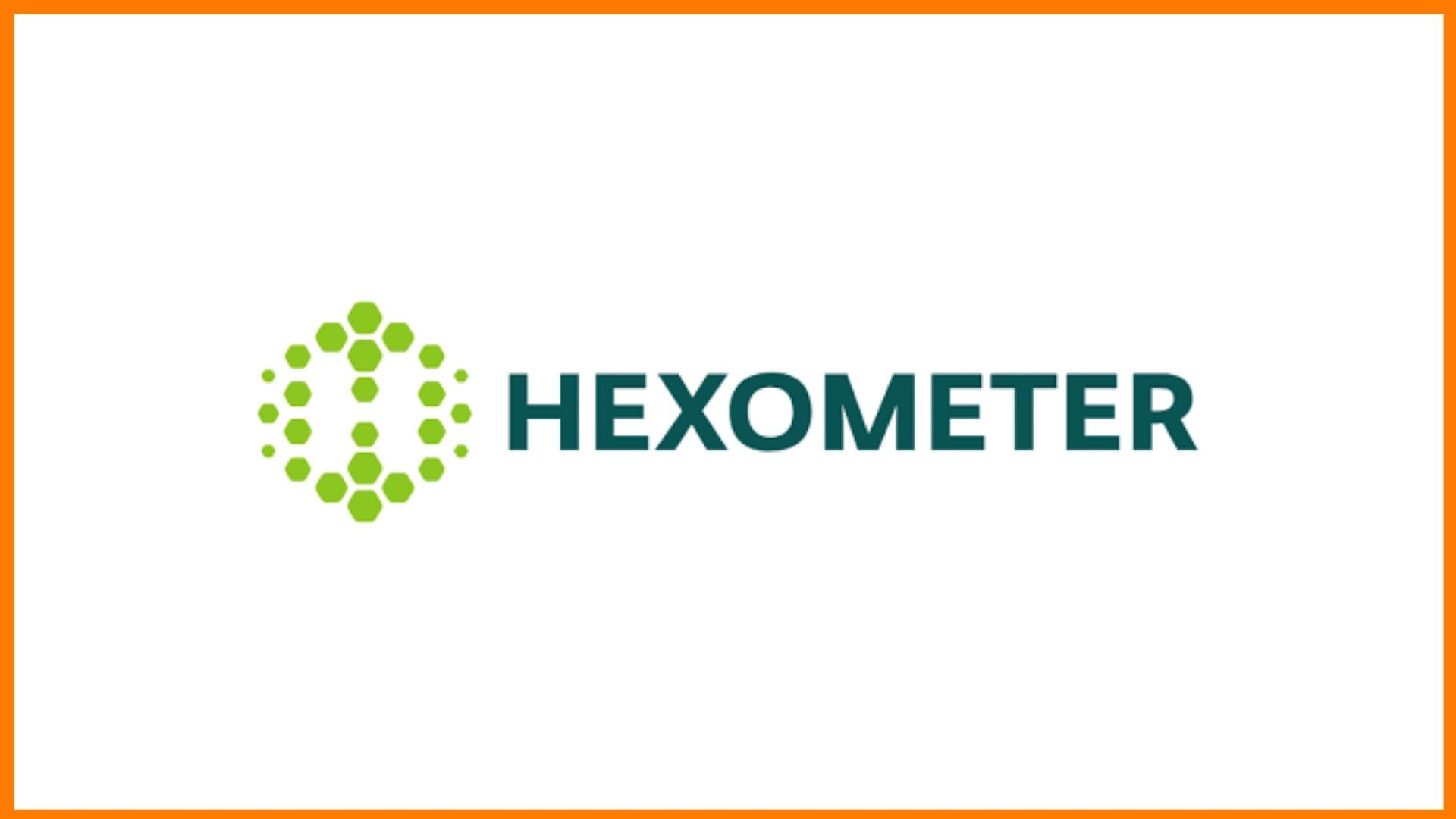 Hexometer Logo