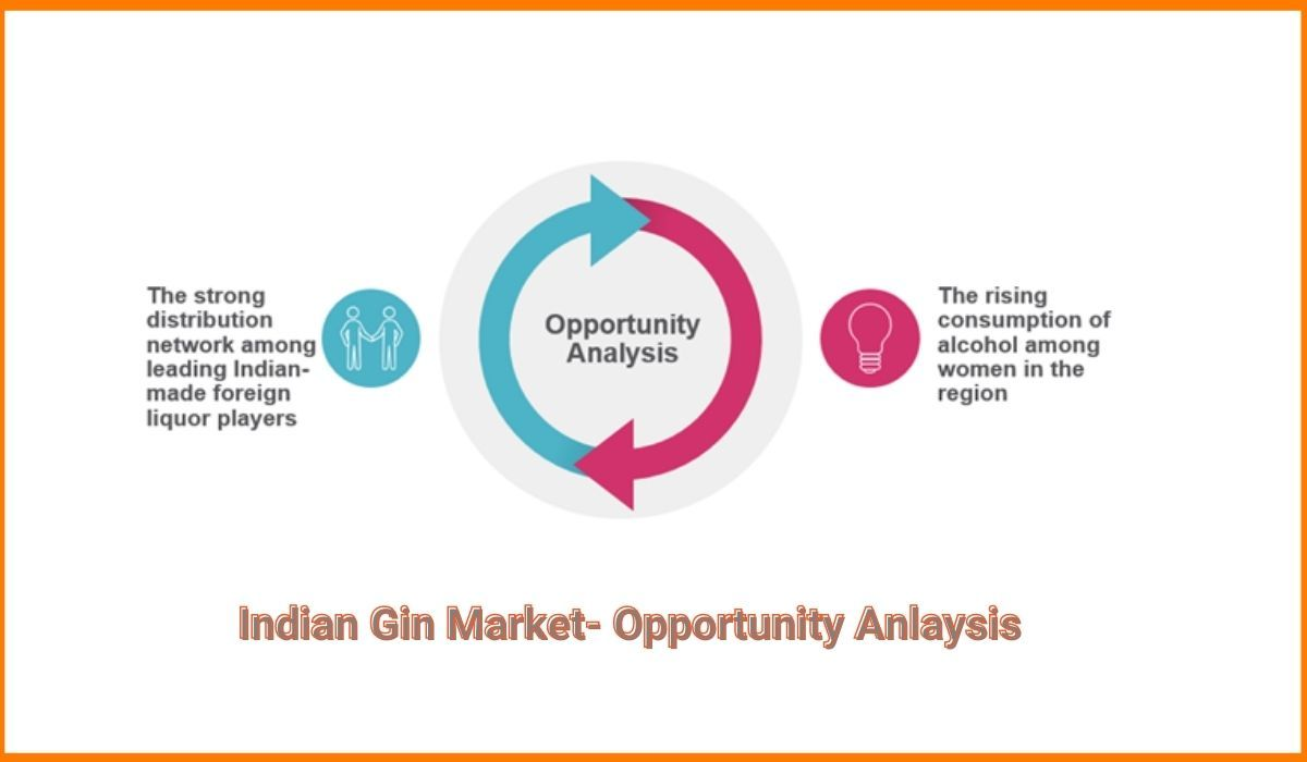Indian Gin Market Opportunity Analysis
