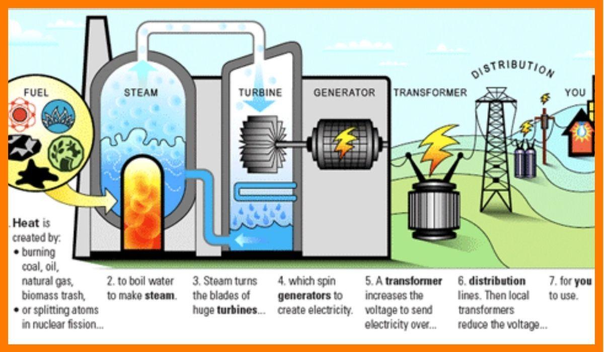 The process of Biomass
