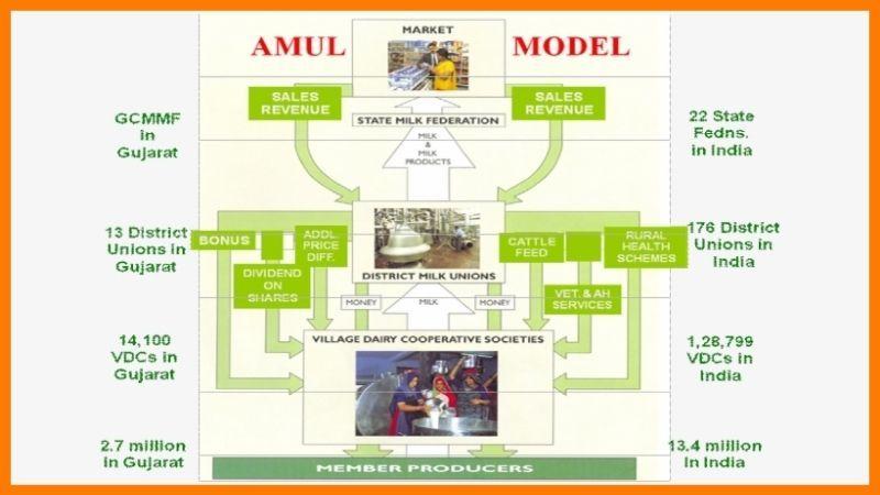 Amul Case Study - Amul Business Model