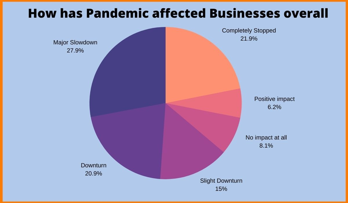 Pandemic Affected Business