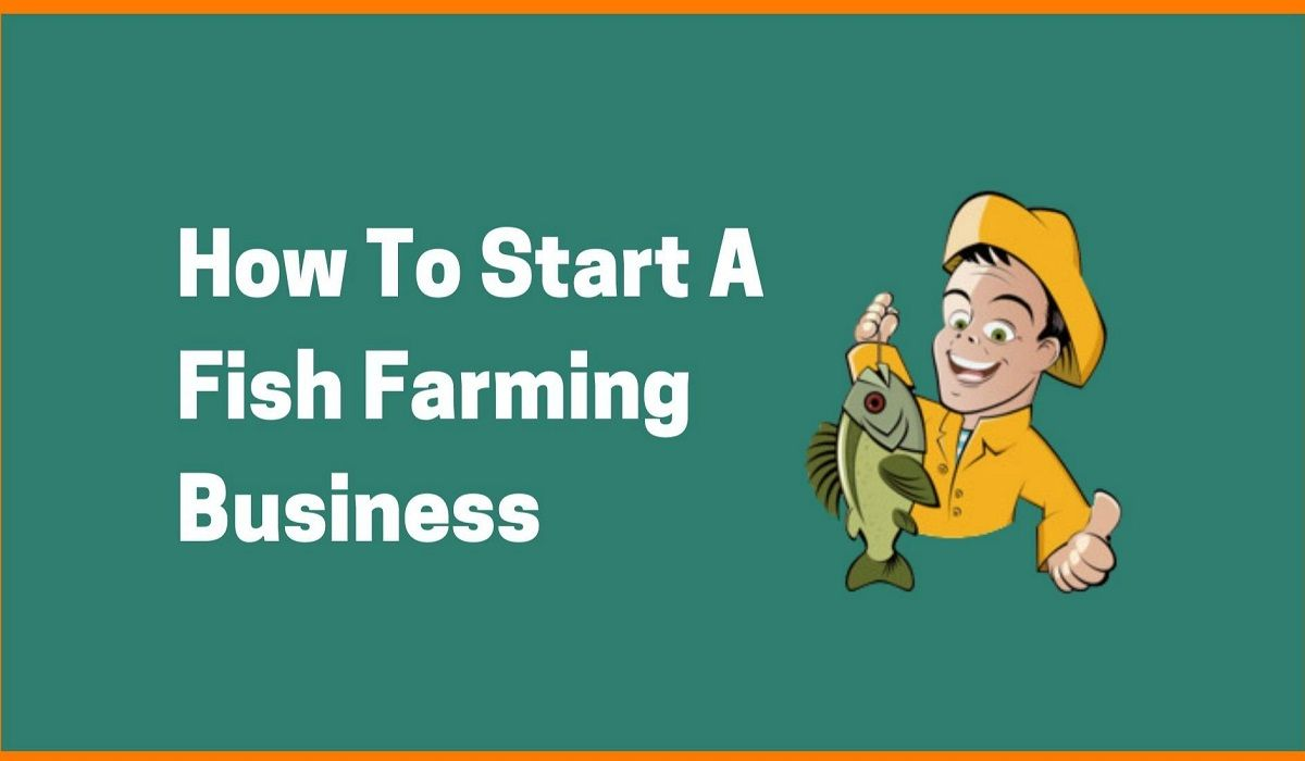 6 Steps to Get Started with Fish Farming Business