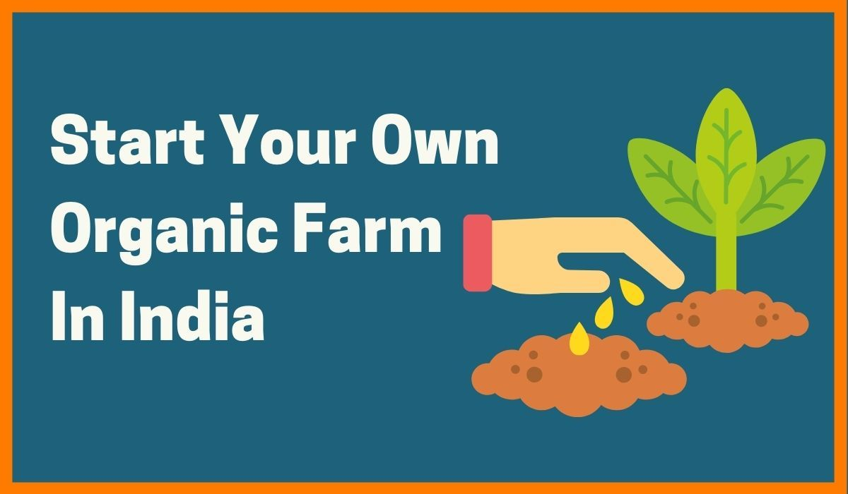 Organic Farming in India: Tips & Tricks