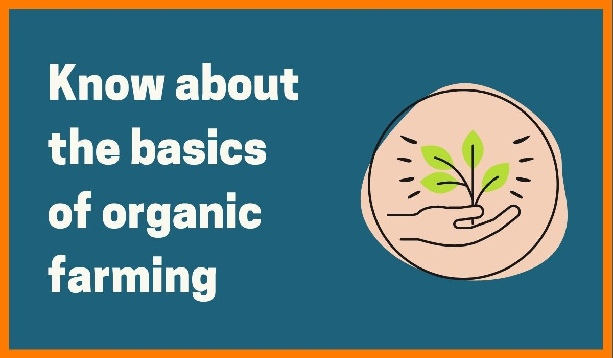 Organic farming is growing_startuptalky