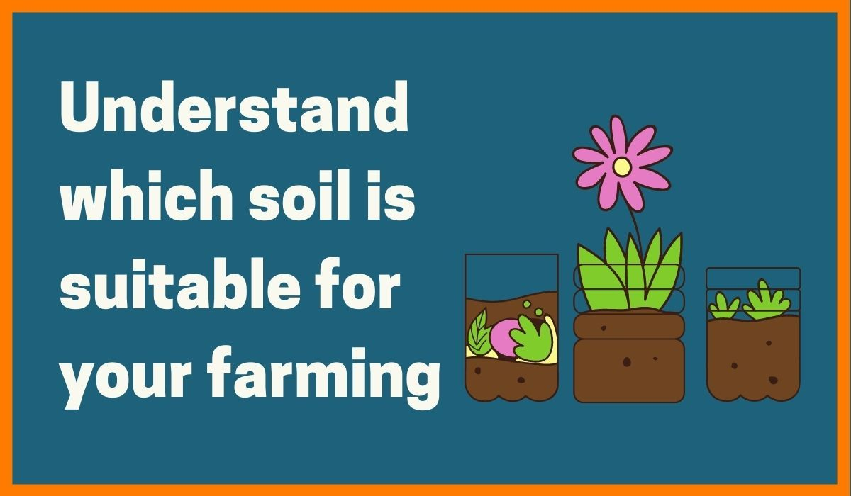 Soil is essential_startuptalky