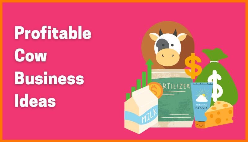5 Most Profitable Cow Business Ideas