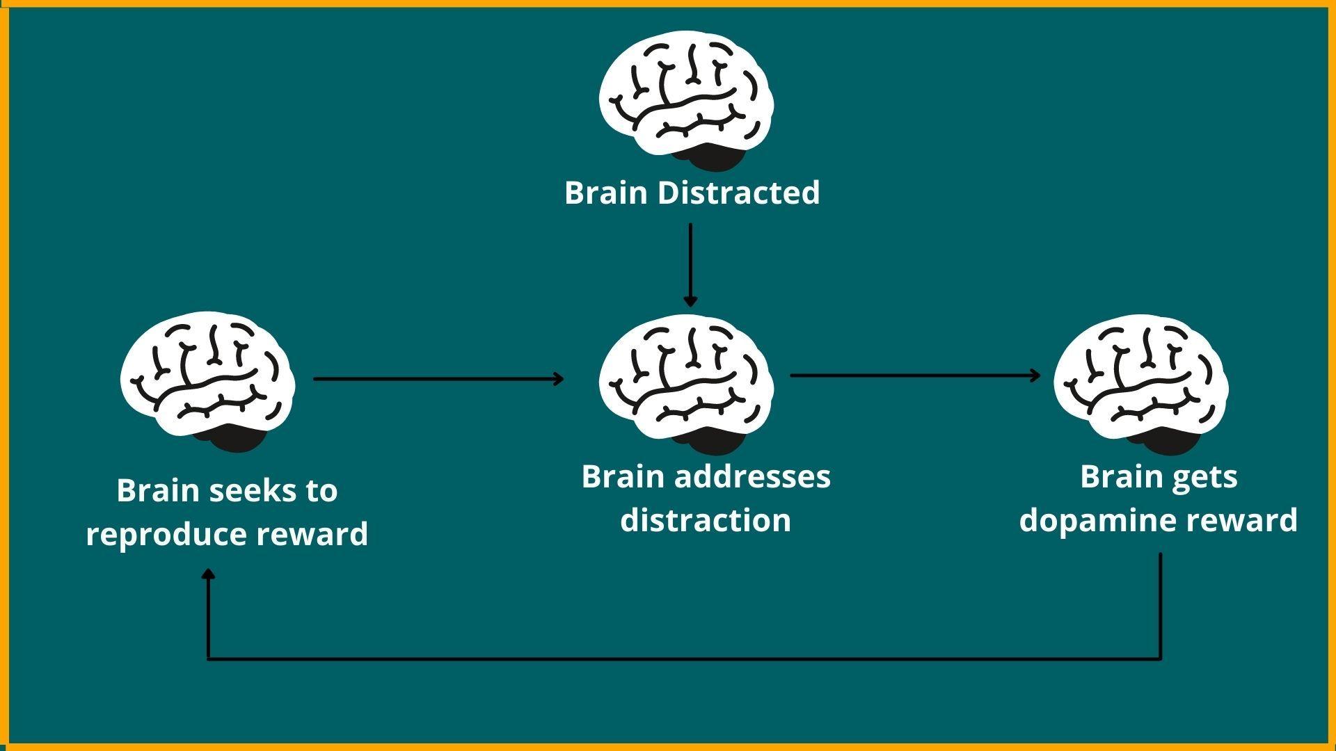 Dopamine-addiction feedback loop