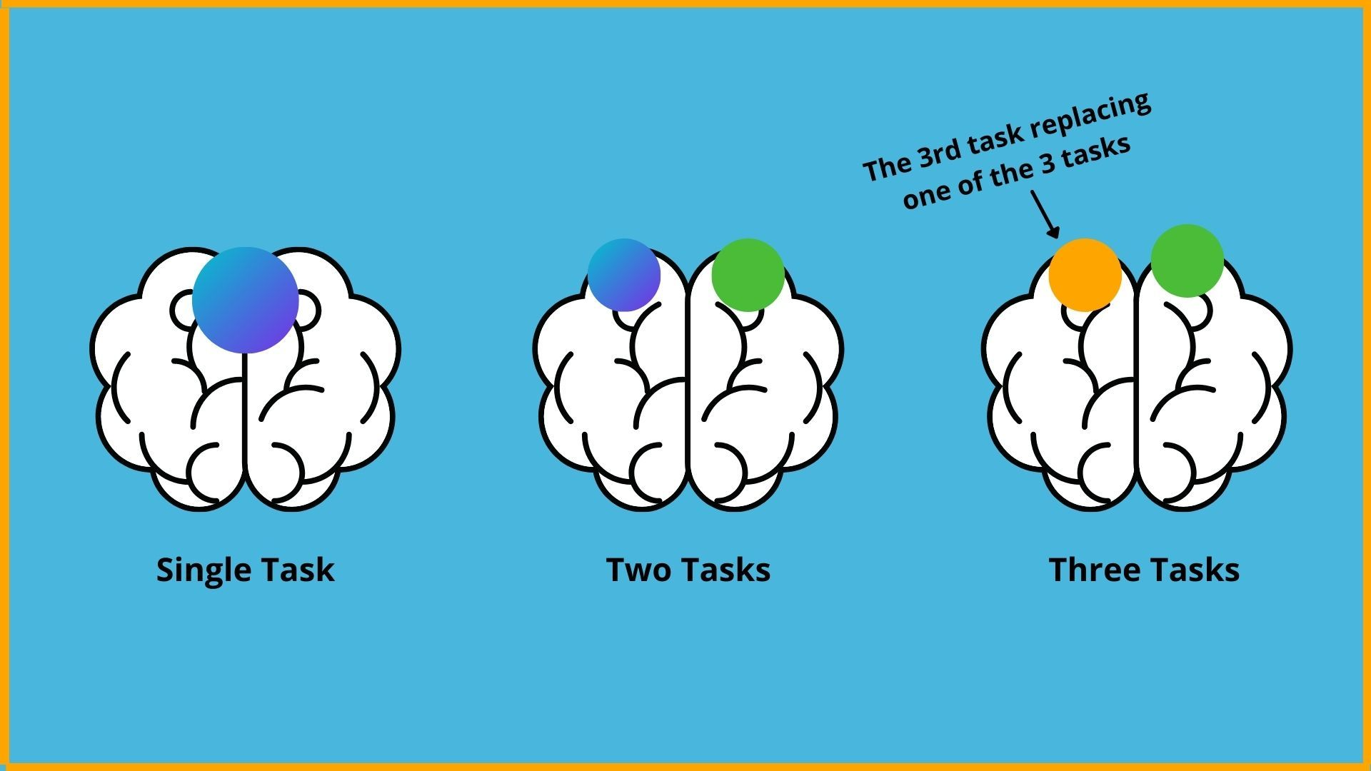 Functions of Brain