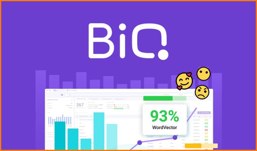 BiQ allows users to boost their SEO rankings