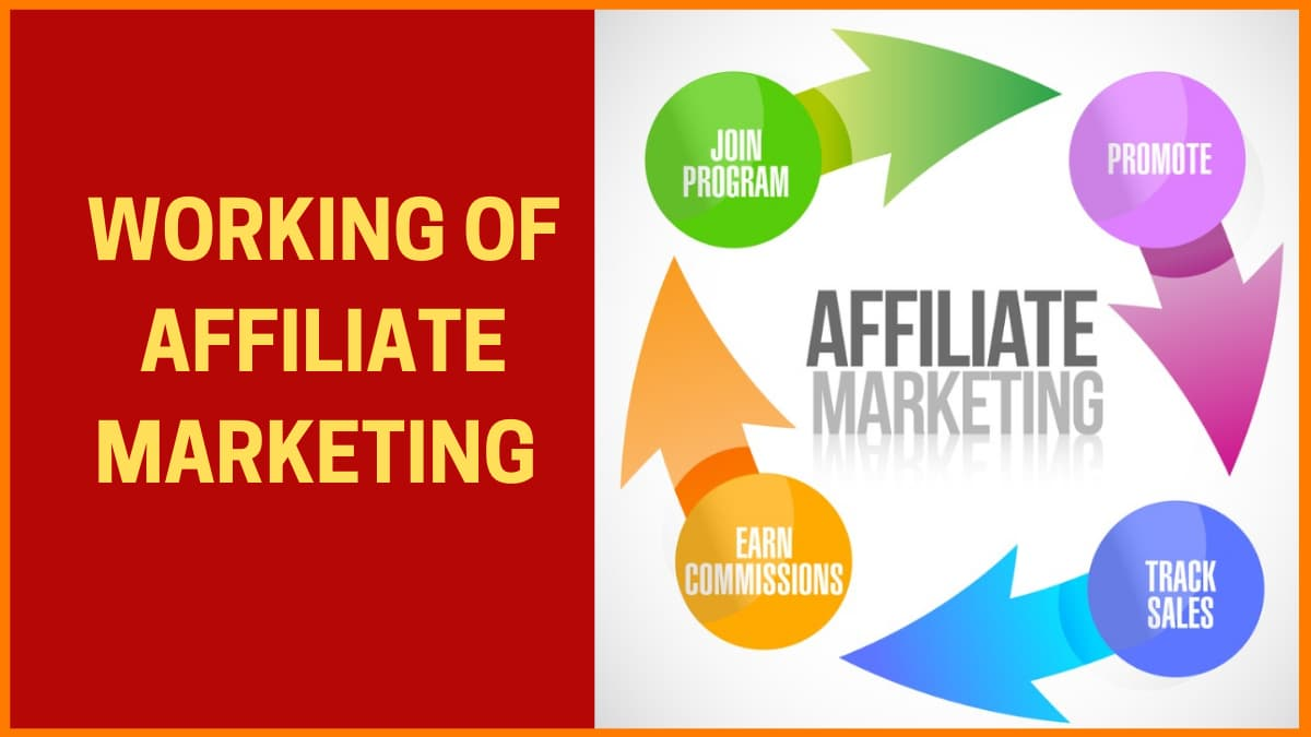 Step-By-Step Guide To How Affiliate Marketing Works | StartupTalky