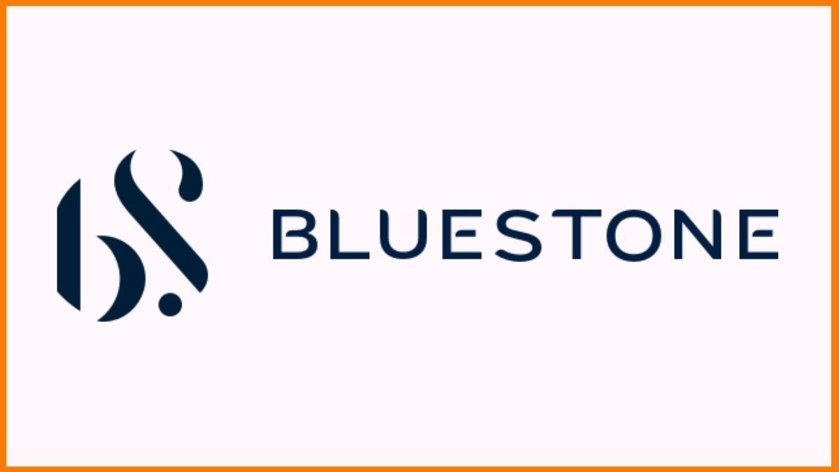 Bluestone Logo | Ratan Tata funded Startups
