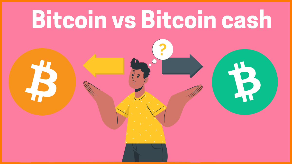 Bitcoin vs Bitcoin cash: Everything you need to know