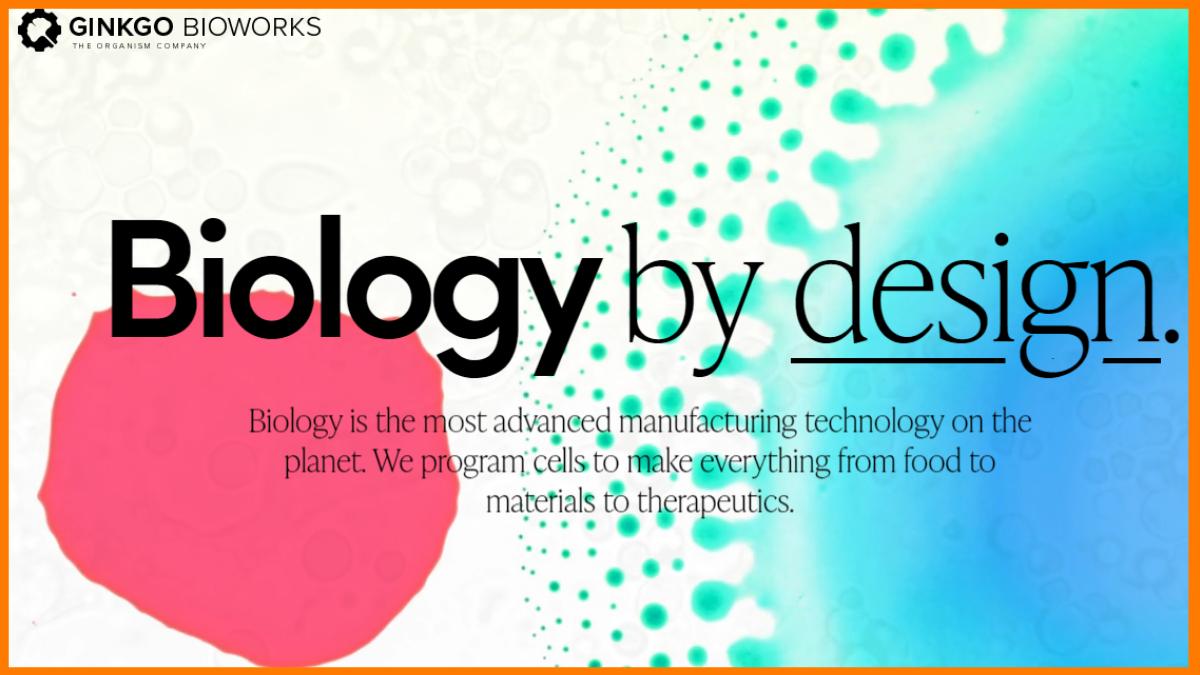 Ginkgo Bioworks | Y combinator's Startup