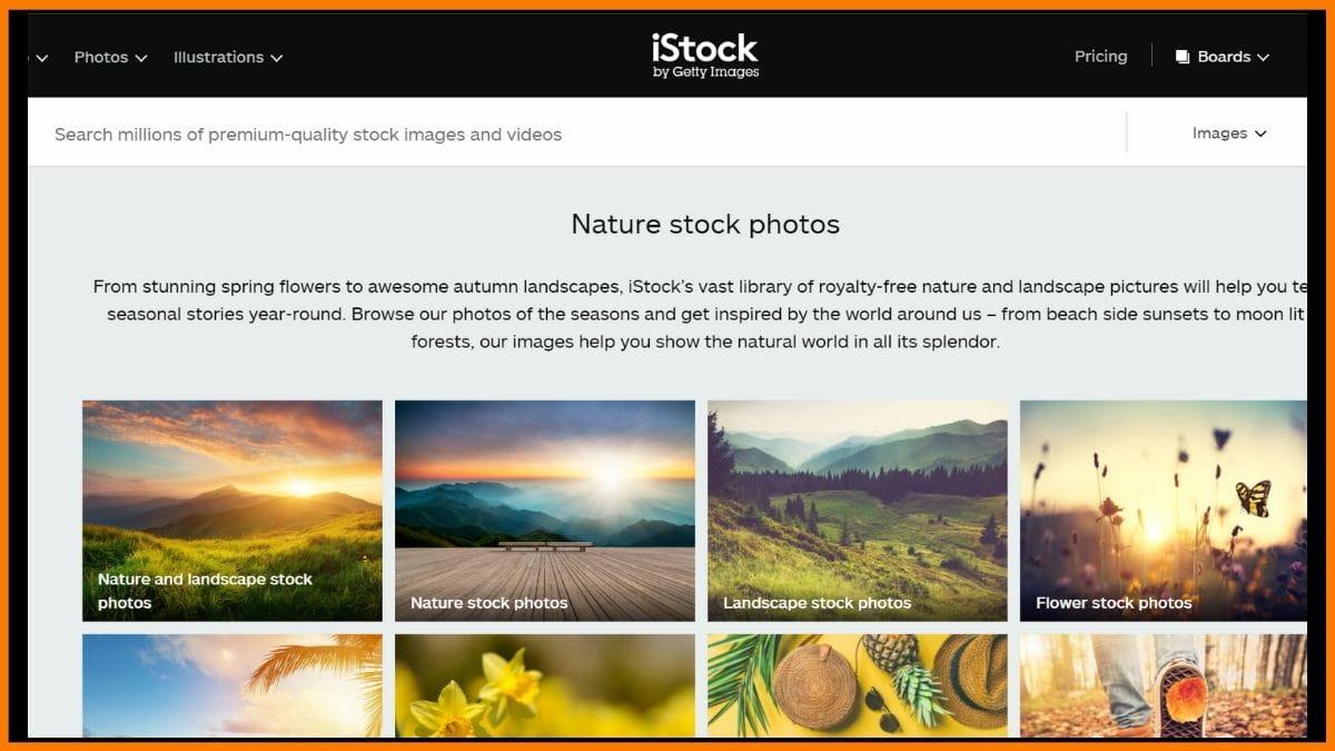 iStock Website