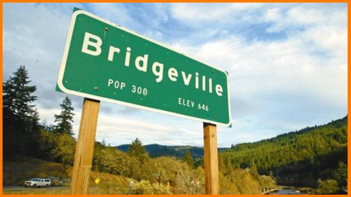 Bridgeville town for sale on Ebay