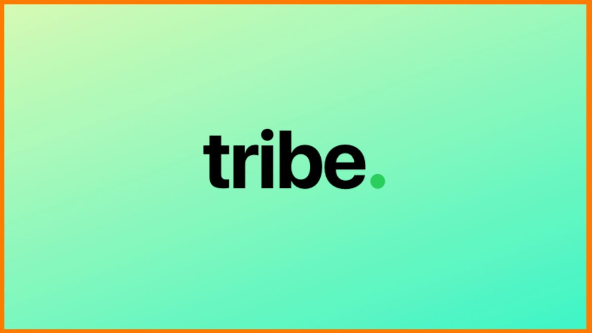 Tribe.so Review & Pricing | All About Community Building