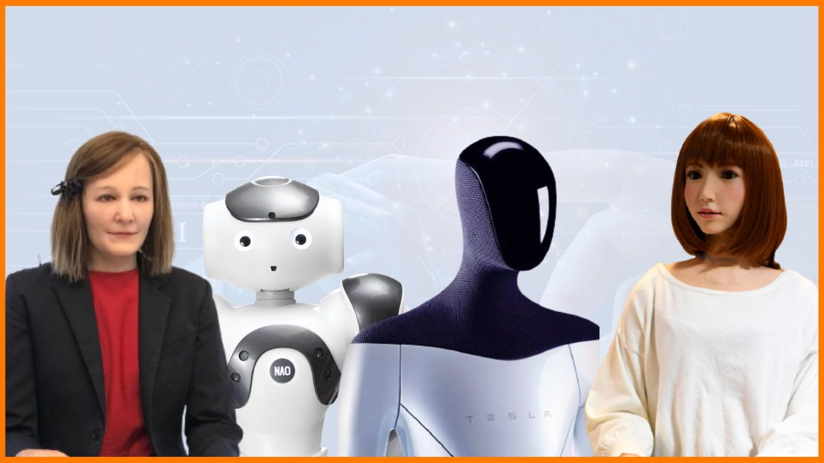 Humanoid Robots, Tesla Bot and Beyond