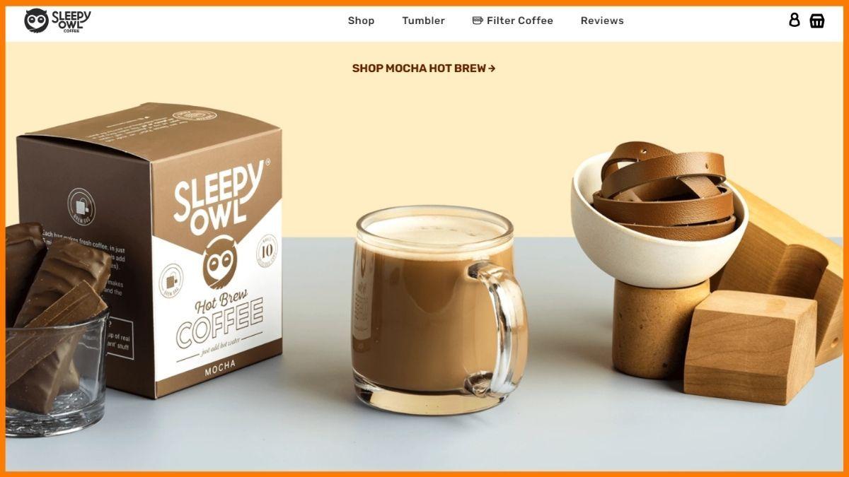 Sleepy Owl Website