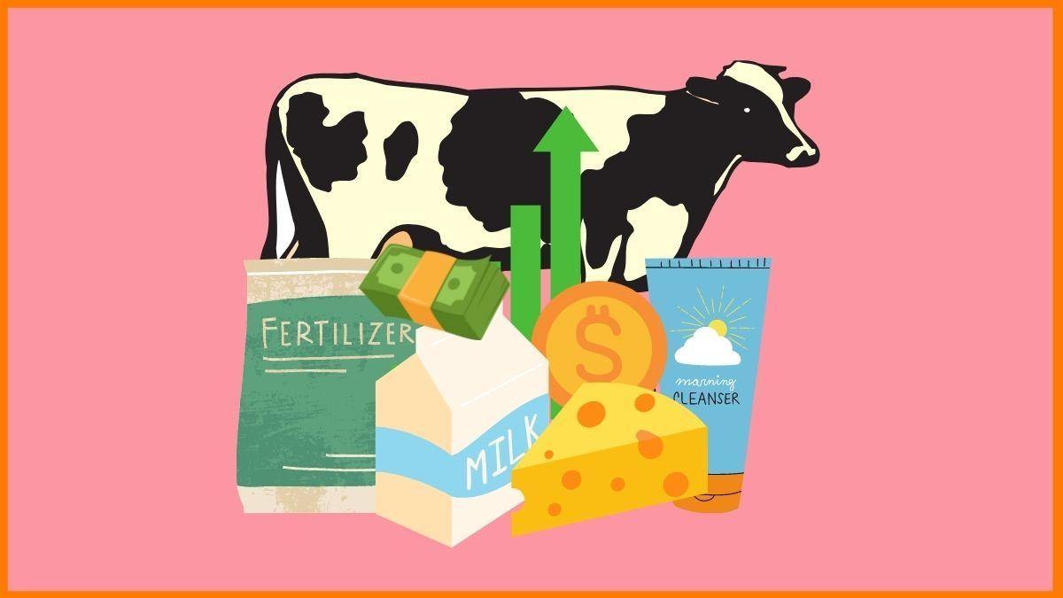 6 Most Profitable Cow Business Ideas