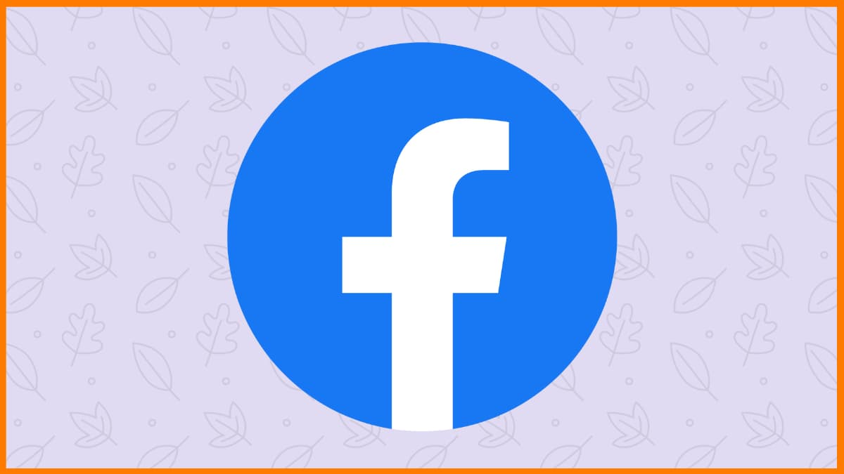 Facebook is the best platform to pitch your ideas.