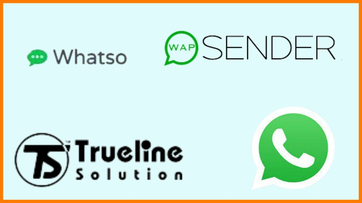 Tools for Sending Bulk Messages on WhatsApp Business